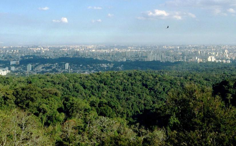 A Delta Prag Desentupidora Zona Norte é uma prestadora de serviços de Desentupimento da região